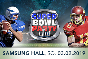 Super Bowl Party Banner 300x200 mit